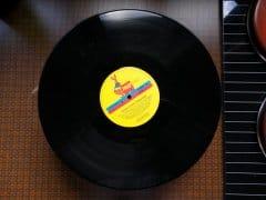 DIY Schüsseln aus Schallplatten 1