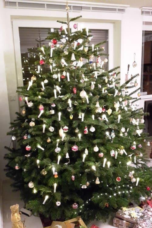 Versuchshasi wünscht euch schöne Weihnachten › Versuchshasi.de